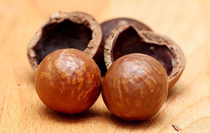 Сколько калорий в орехе макадамия
