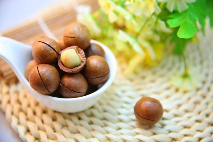 Польза ореха макадамии для организма человека