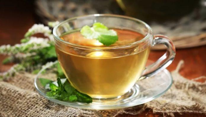 Характеристики эфирного масла чайного дерева